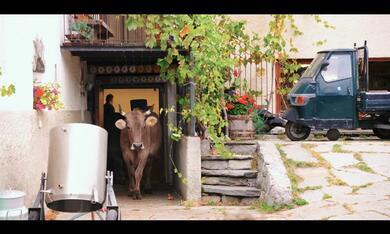 Das System Milch - Bild 5