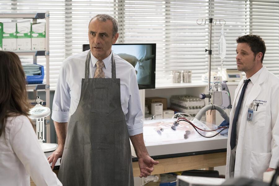 Grey's Anatomy - Staffel 15, Grey's Anatomy - Staffel 15 Episode 17 mit Justin Chambers und Lorenzo Caccialanza