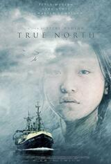 True North - Poster