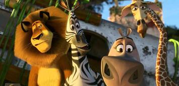 Bild zu:  Madagascar 2