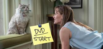 Voll verkatert - Jetzt auf DVD und Blu-ray