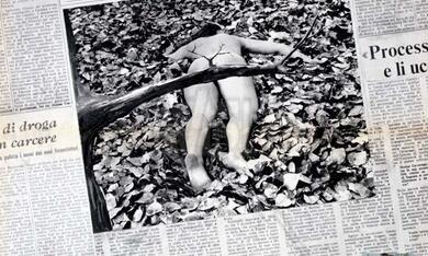 Ragazza tutta nuda assassinata nel parco (1972) - Bild 1