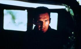 Roter Drache mit Ralph Fiennes - Bild 18