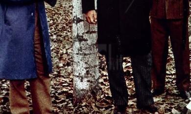 Ragazza tutta nuda assassinata nel parco (1972) - Bild 3
