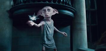 Bild zu:  Fans versuchen ihn zu retten: Dobby der Hauself
