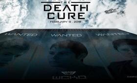 Maze Runner 3 - Die Auserwählten in der Todeszone - Bild 42