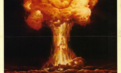 Apocalypse 2024 - Bild 3
