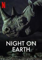 Die Erde bei Nacht