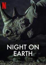 Die Erde bei Nacht - Poster