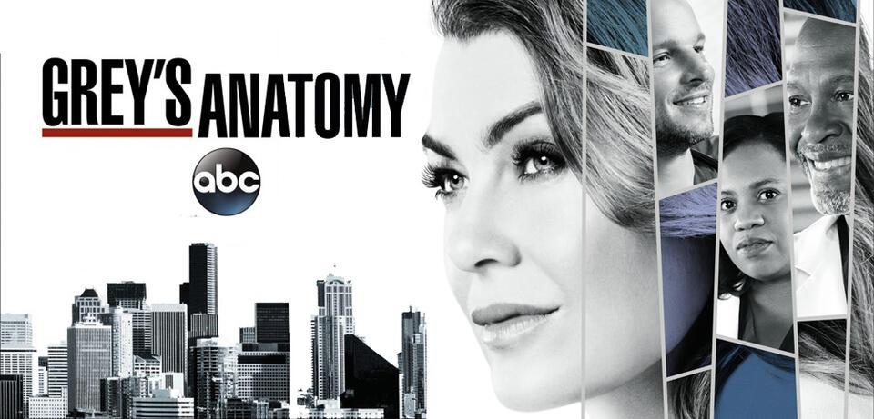 Staffel 14 GreyS Anatomy