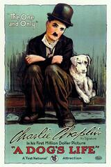 Ein Hundeleben - Poster