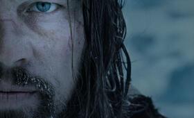 The Revenant - Der Rückkehrer mit Leonardo DiCaprio - Bild 129