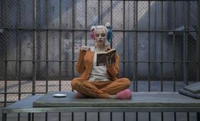 Suicide Squad mit Margot Robbie - Bild 115